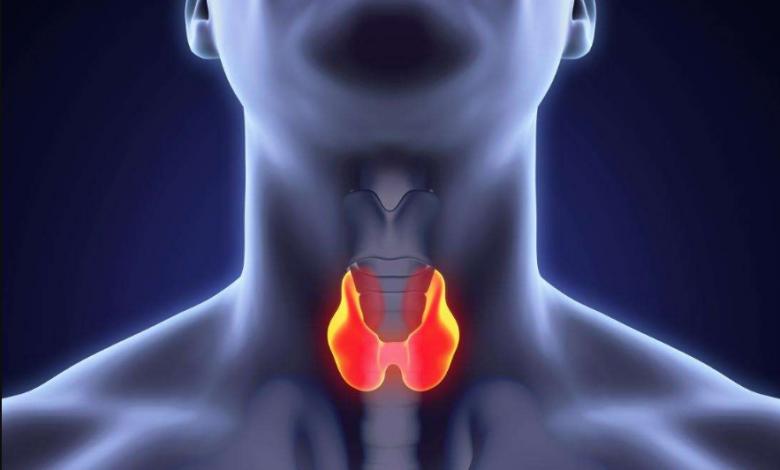 Tiroid Bezi İltihabı Belirtileri Nelerdir? Nasıl Anlaşılır?